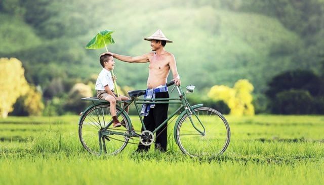 Thơ thai giáo: Cầu mong cha mẹ bình an