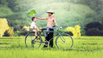 Cầu mong cha mẹ bình an