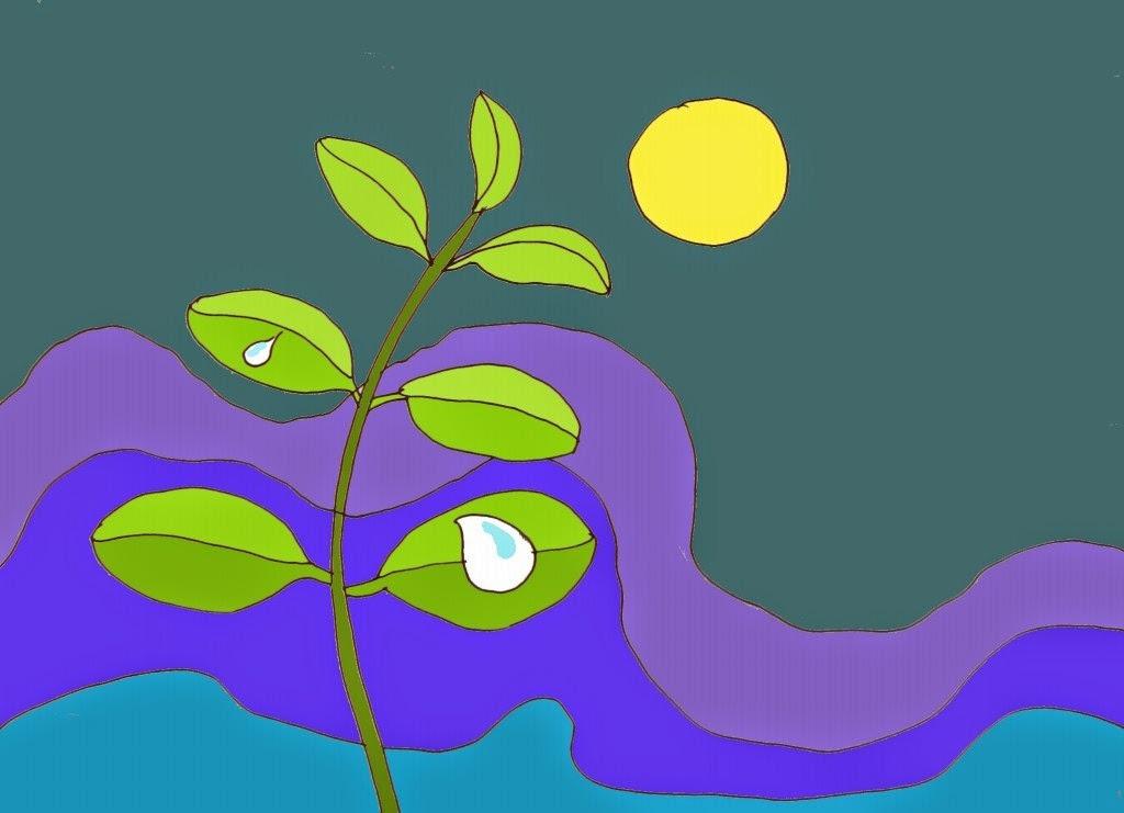 Thơ thai giáo: Giọt sương đêm