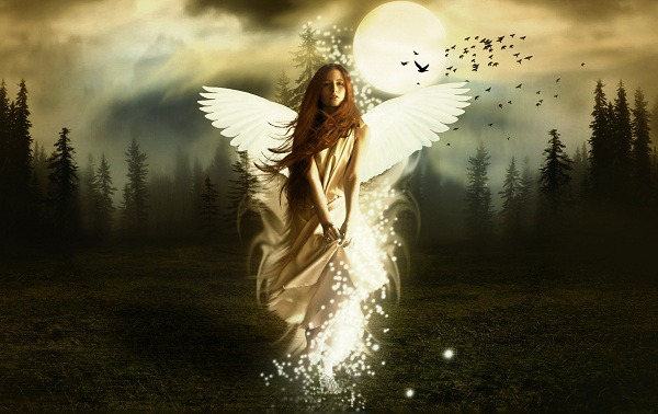 Thiên thần đến trong đêm