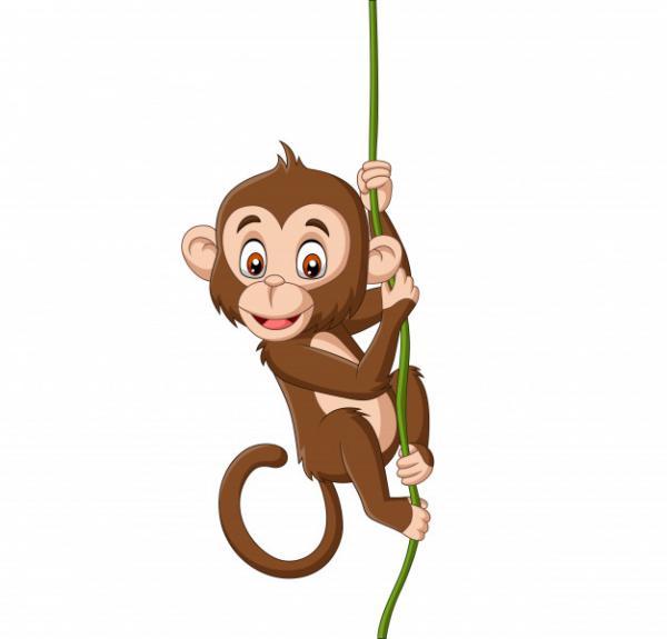 Khỉ con hay chế nhạo
