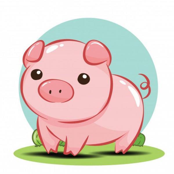 Lợn con đáng yêu