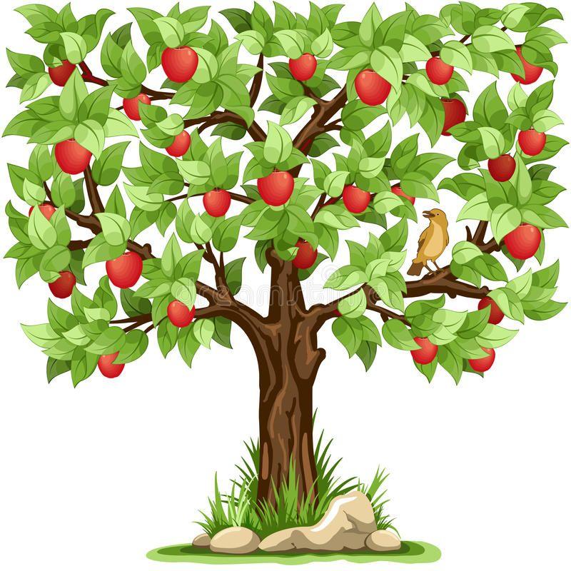 Truyện thai giáo: Cây táo vui vẻ