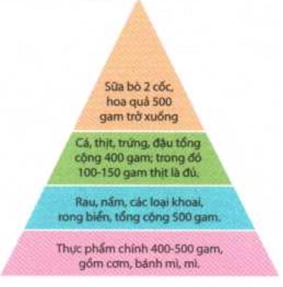 4 điểm ghi nhớ đảm bảo cân bằng dinh dưỡng