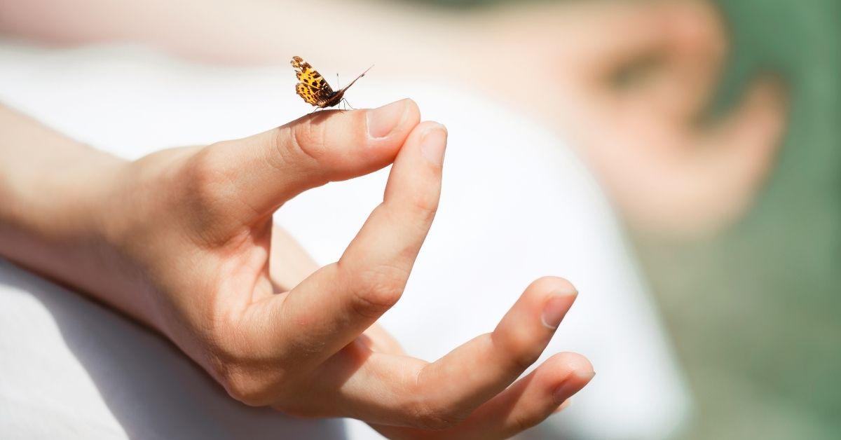 Thiền làm chủ rối loạn lo âu, loại bỏ bất an, lo lắng, căng thẳng